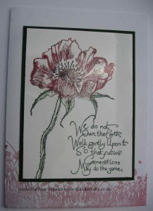 IndigoBlu Poppy Meadow Stamp